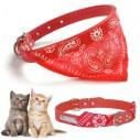 Collar con Pañoleta para Mascotas Pequeñas correa bandana perro o gato