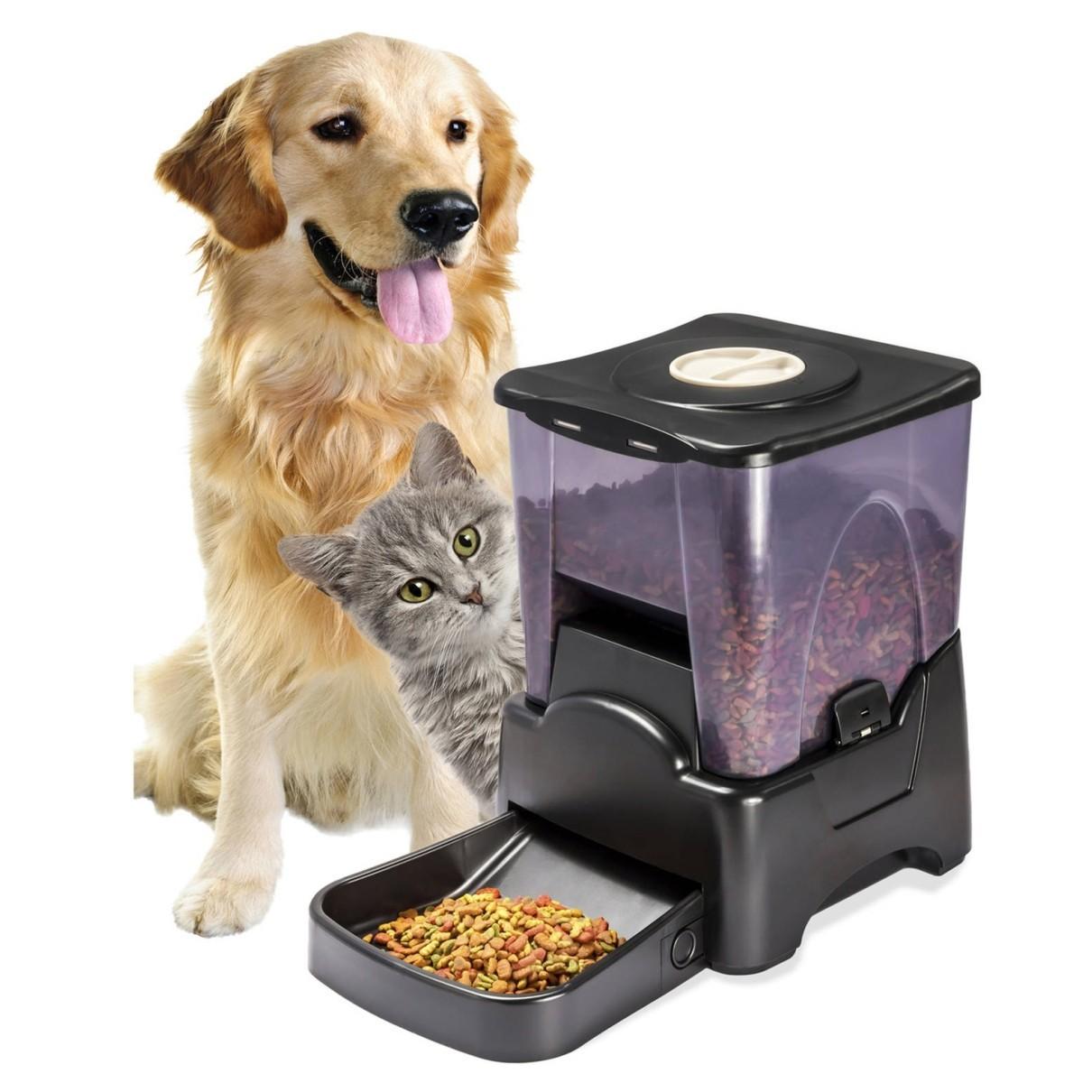 Dispensador autom tico y programable de alimentos para mascotas - Alimentos recomendados para perros ...