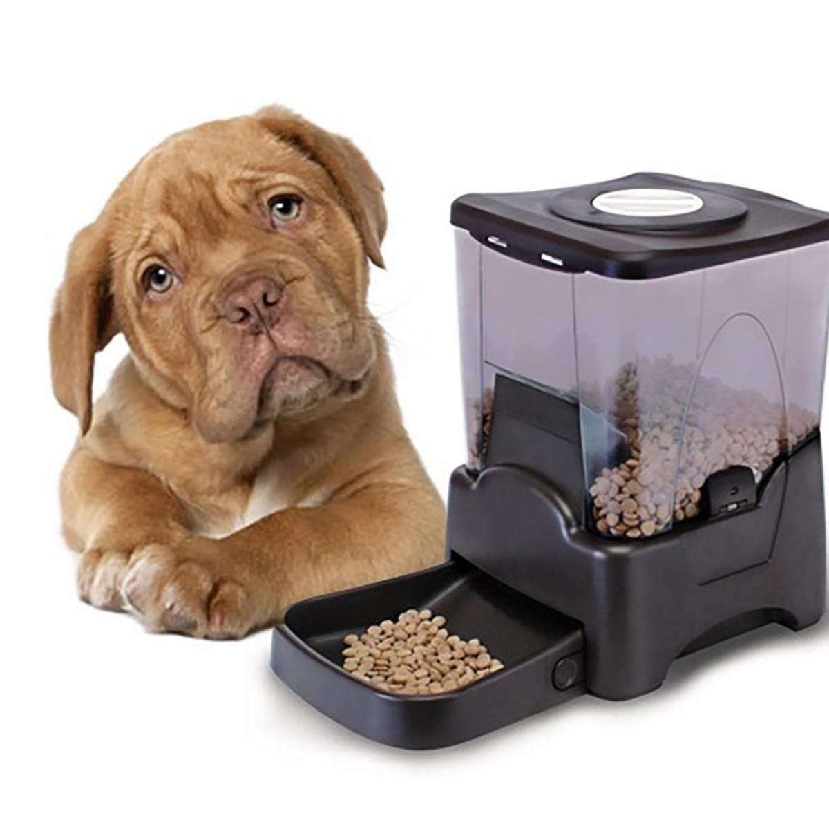 Dispensador autom tico y programable de alimentos para for Dispensador de comida para perros