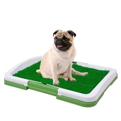 Tapete de Entrenamiento Puppy Potty baño Pasto Pequeño